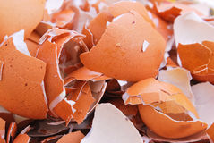 Shell dos ovos cozidos Fotos de Stock Royalty Free