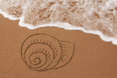 Shell drawn in the sand Stock Photos