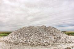 Shell e Clam Clamshells esmagados de ostra no pântano Imagem de Stock