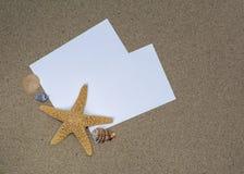 Shell e estrela do mar em um arenoso imagem de stock royalty free