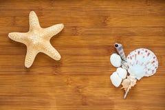 Shell e estrela do mar na tabela Imagem de Stock