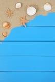Shell e estrelas do mar na praia no verão com copyspace Fotografia de Stock Royalty Free