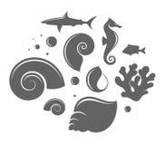 Shell e peixes Fotos de Stock Royalty Free