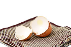 Shell of Egg. Stock Photography