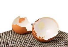 Shell of Egg. Stock Photos