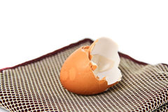 Shell of Egg. Royalty Free Stock Image