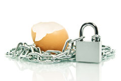 The shell of an egg,covered with a chain padlock. Stock Image