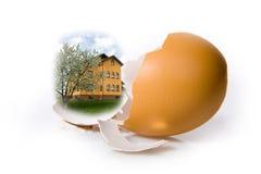 Shell egg on white Stock Images