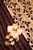 Shell em uma tampa de cama marrom. Fotos de Stock Royalty Free