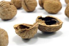 Shell of empty walnut Stock Photo