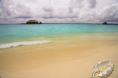 Shell en el océano Fotografía de archivo libre de regalías