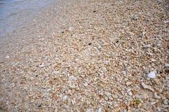 Shell en Puka Beach photographie stock