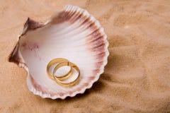 Shell en trouwring Stock Afbeeldingen