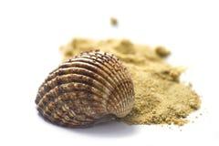 Shell en zand dat op wit wordt geïsoleerdÀ Royalty-vrije Stock Afbeelding