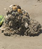 Shell Encrusted Sand Castle Imagens de Stock