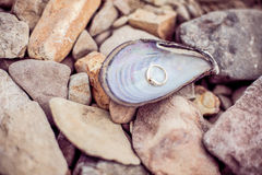 Shell with engagement ring inside Royalty Free Stock Image
