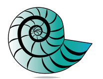 Shell espiral Fotografía de archivo libre de regalías