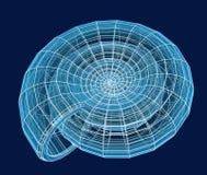 Shell espiral abstracto 3d de una red azul Fotos de archivo libres de regalías