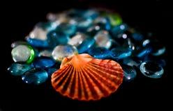 Shell et perles photo stock