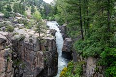 Shell Falls, Wyoming fotografie stock libere da diritti