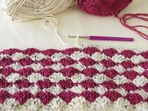 Shell feitos crochê bicolores Fotografia de Stock