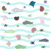 Set of shell, fish, starfish vector illustration
