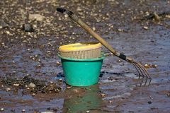Shell Fishing Bucket Royalty Free Stock Photo