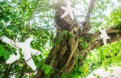 Shell Flower High-van de de Bomen de boszonneschijn van de voetlijst openluchtpool Royalty-vrije Stock Fotografie