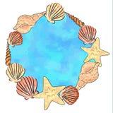 Shell Frame Imagenes de archivo