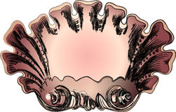 Shell Frame. Illustration,  frame of a pink shell in white background. See the rest in the series as well Royalty Free Stock Images
