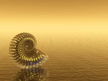 Shell_Gold Stock Image