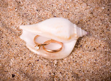 Shell with golden wedding rings Royalty Free Stock Photography