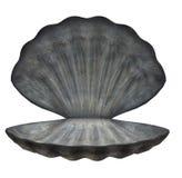 Shell grande del mar Imágenes de archivo libres de regalías