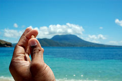 A shell in hand by the Ocean / sea / beach /tropic Royalty Free Stock Image