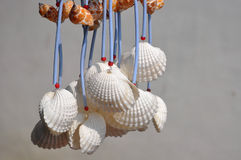 Shell handicraft hangings Stock Photography