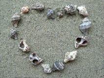 Shell heart photo frame Stock Photography