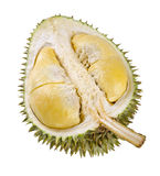 Shell (husk) of the prized durian fruit. Royalty Free Stock Image