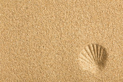 Shell imprinted on the sand Royalty Free Stock Photo