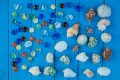 Shell-inzamelingszeeschelp royalty-vrije stock fotografie
