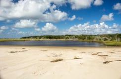 Shell Island à Georgetown, la Caroline du Sud photos libres de droits