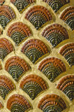 Shell of king of Nagas pattern Stock Image