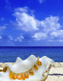 Shell lays with amber bead on background of ocean Stock Images