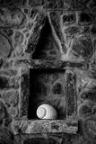 Shell on ledge Royalty Free Stock Images