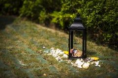 Shell legen Kerzenlampen-Graswiese Anordnung der im Freien europäische hin Stockfoto