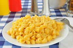 Shell macaroni and cheese Royalty Free Stock Photography