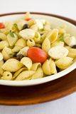 Shell Macaroni and chesse with tomato. Macarnoni Shells with Mozzarella cheese, tomato, black olives, in light olive oil.  A Healthy Pasta salad Stock Image