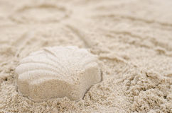 Shell made of sand on a sandy beach. Close up of shell made of sand on a sandy beach. Summer concept. Shallow dof Royalty Free Stock Photography