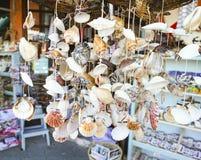 Shell at market Royalty Free Stock Photography