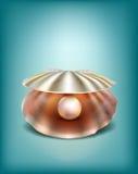 Shell med en pärla Arkivbilder