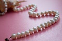 Shell mit einer Perlenhalskette Stockbilder